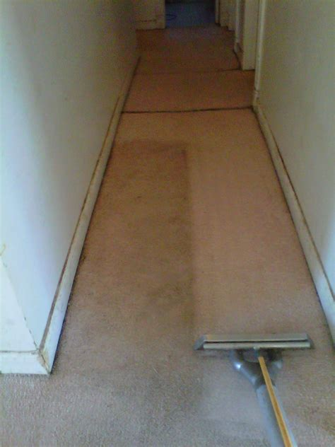 stanley steamer rug cleaning carpet cleaning before after carpet tips san diego cleaning service and cleaning