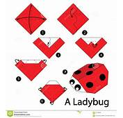 Step By Instructions How To Make Origami A Ladybug