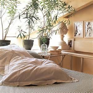 plants for the bedroom a breath of fresh air plants in the bedroom state of