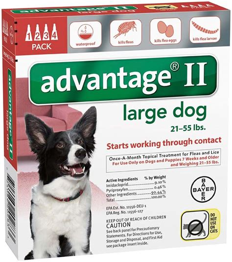 advantage ii for dogs how to get rid of fleas remove pests from your home
