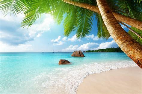 tropical island paradise tropical paradise beach coast sea blue emerald ocean palm