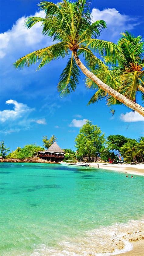 paradise wallpaper hd iphone tropical palm beach iphone wallpaper hd