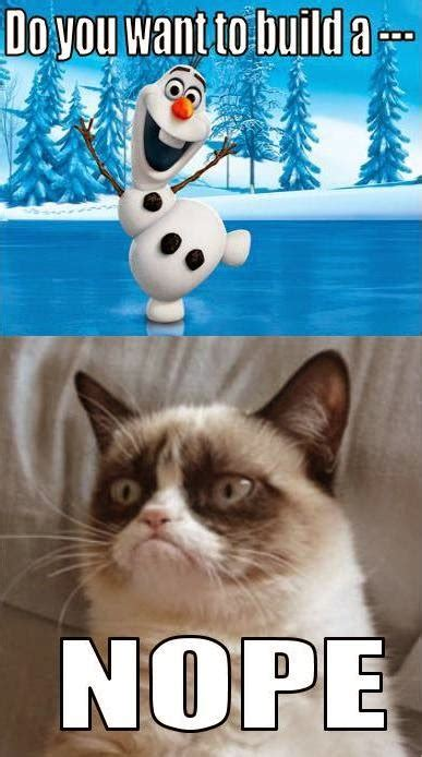 Grumpy Cat Snow Meme - an old soul at home frozen meets grumpy cat