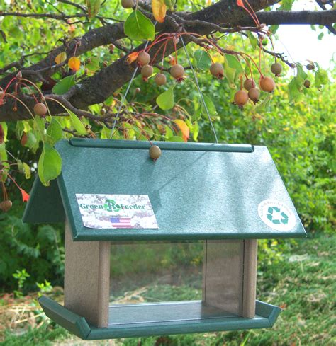songbird essentials mealworm bird feeder hunter drift