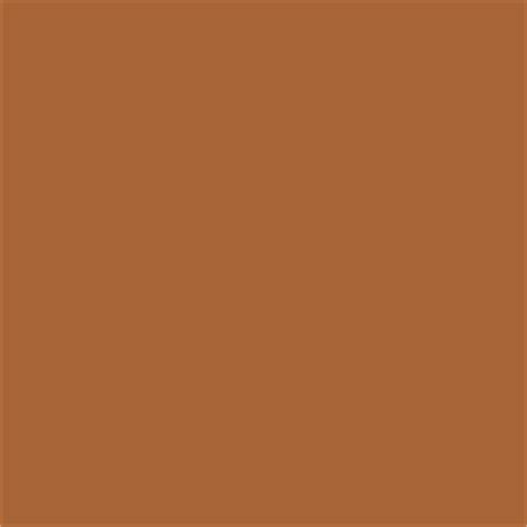 paint color sw 6356 copper mountain from sherwin williams contemporary paint by sherwin