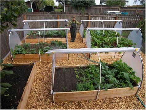 Raised Bed Vegetable Garden Layout Raised Bed Vegetable Backyard Layouts Ideas