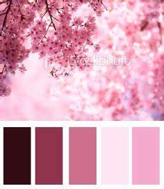 Corner Bath Shower cherry blossom pantone color palette cherry blossoms