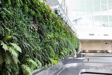 living walls  auckland christchurch nz wide oasis