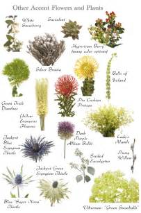 flowers by color flower names by color hayley s wedding tips 101