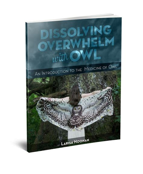 Overwhelm And How To Get Over It Learn With Ginny - dissolving overwhelm with owl larisa noonan