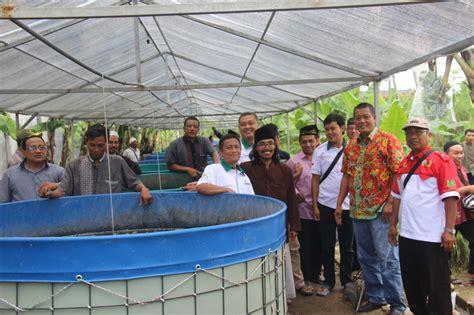 Jual Rangka Kolam Terpal Jogja cara ber budidaya ikan lele di lahan sempit kolam terpal