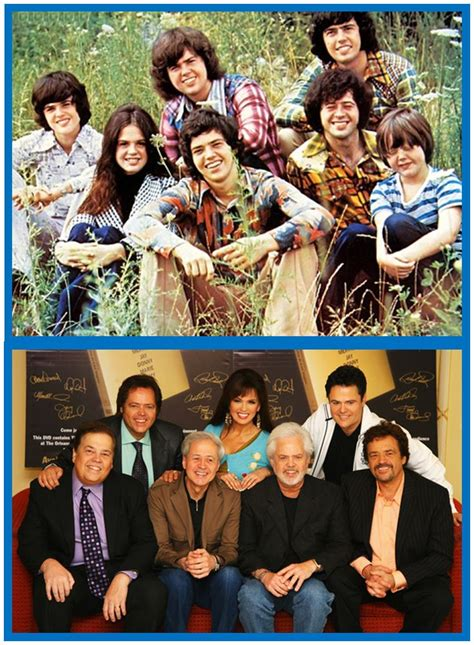 Donny Osmond To Appear On All My Children by The 25 Best The Osmonds Ideas On Osmond