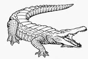 106 Dessins De Coloriage Crocodile &224 Imprimer Sur LaGuerchecom  sketch template