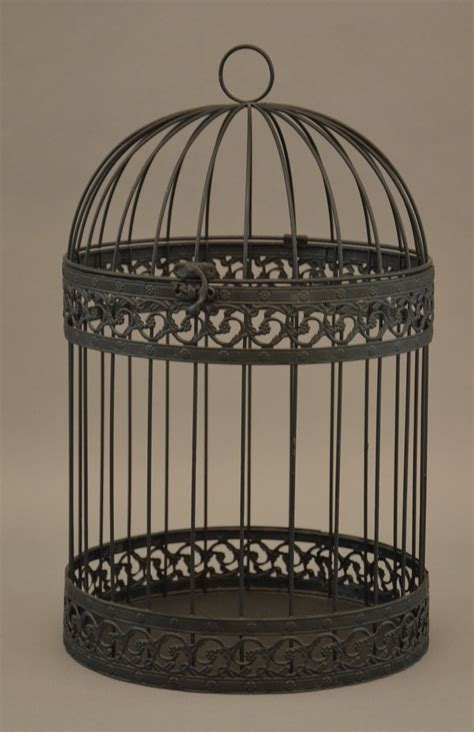 another bird cage metaphor project pinterest