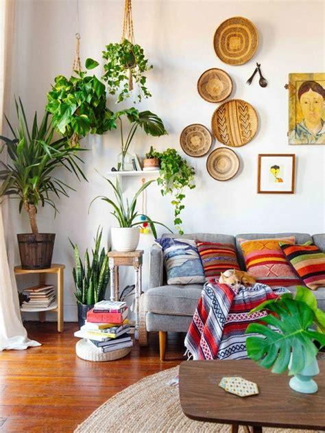 hängepflanzen wohnzimmer pflanze mit gro 223 en bl 228 ttern ein herrlicher hingucker zu