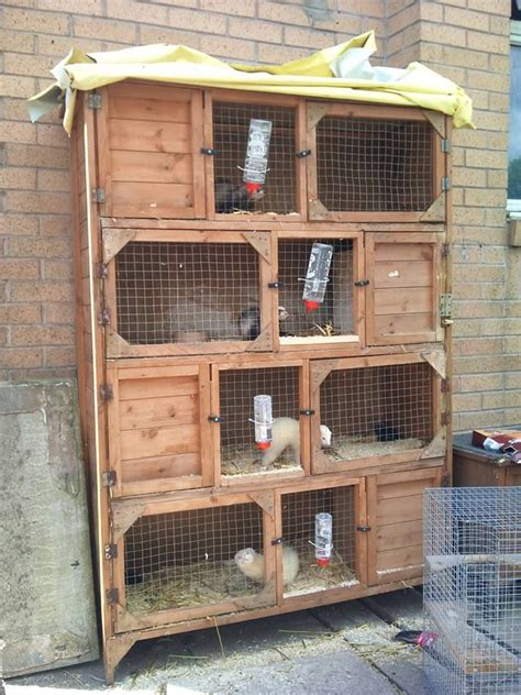 Ferret Hutch For Sale ferrets also cages for sale halifax west pets4homes
