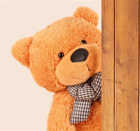 Boneka Teddy Jumbo Ukuran 15 Meter Boneka Teddy Murah Harga Berpatutan Kualiti Yang