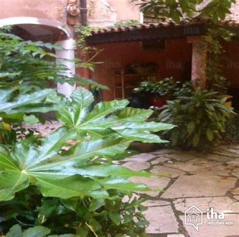 appartments in venice flat apartments for rent in venice iha 67322