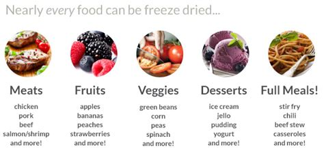 freeze dried food the differences between freeze dried and dehydrated foods survivalkit