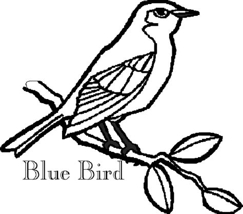 Blue Bird Bluebird Coloring Page