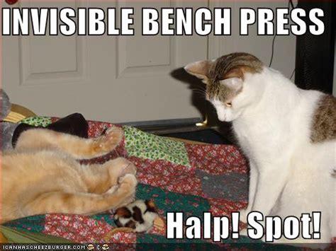 bench press 180 las vegas stellar path page 2