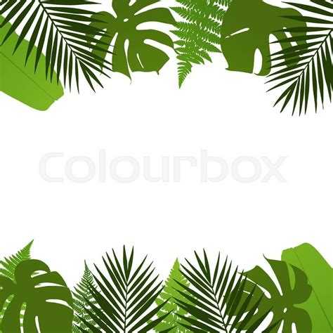 Stock Vector Of Tropical Leaves Background With Palm Fern