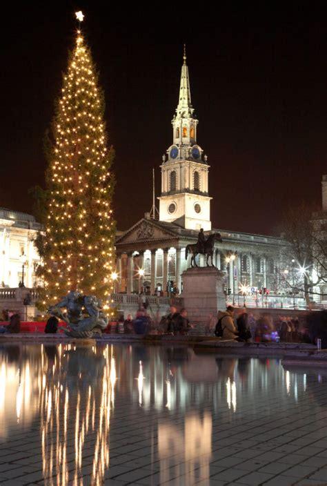 pointy    christmas tree debate toronto star
