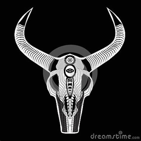 el crneo de akhenatn 8498725585 el cr 225 neo de un toro ilustraci 243 n del vector imagen 55716581