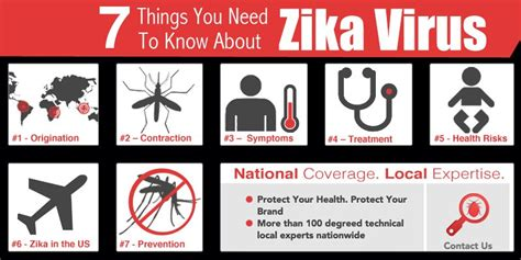 7 Things You Need To About Germs by 7 Things You Need To About Zika Virus Copesan