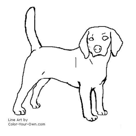 coloring pages of coon dogs 16 best images about puppy designs on
