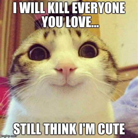 Cute I Love You Meme - smiling cat meme imgflip
