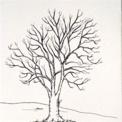 drawings of trees friends family tree takes 30 fingerprints ash large