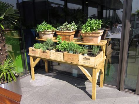 office herb garden herb garden selection available for delivery in terracotta