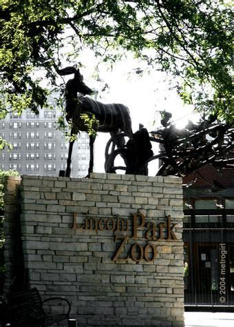 groundhog day lincoln park zoo 25 trending zoo park ideas on chicago meeting