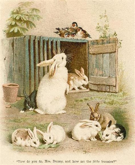 sleepy bunny the bunny who loved lavender books bumble button rabbits and bunnies from