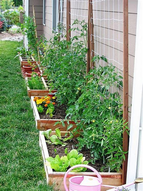Backyard Vegetable Garden Ideas by Affordable Backyard Vegetable Garden Designs Ideas 35