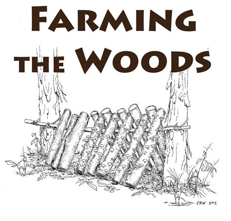 pattern language theory agroforestry solutions from work with nature llc pattern