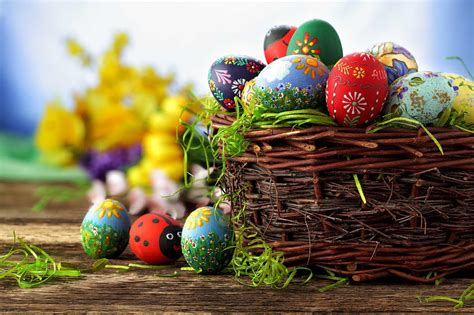 east egg pictures of easter egg hunts www pixshark com images galleries with a bite