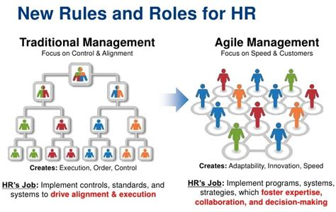 agile strategy management techniques for continuous alignment and improvement esi international project management series books applying agile practices agile human resources hr