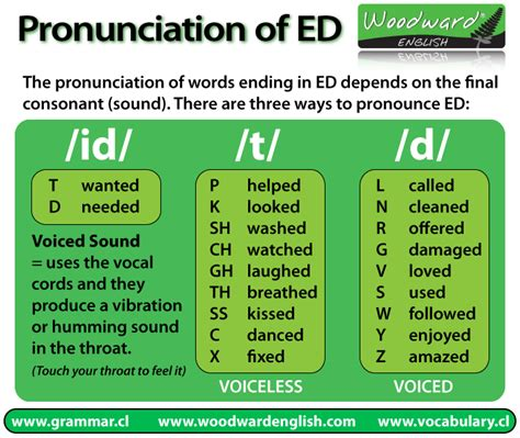 how to pronounce how to pronounce the ed in english woodward english