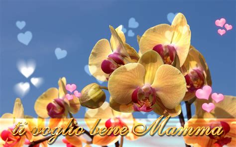 festa della mamma sfondo desktop festa della mamma orchidea