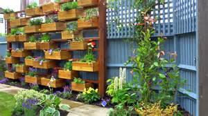 window box herb garden herb garden box images