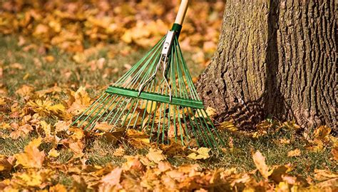 how to prepare garden for winter preparing your landscape for winter roanoke landscapes