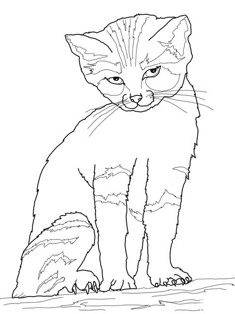 free online coloring pages of cats free printable cat coloring pages for kids