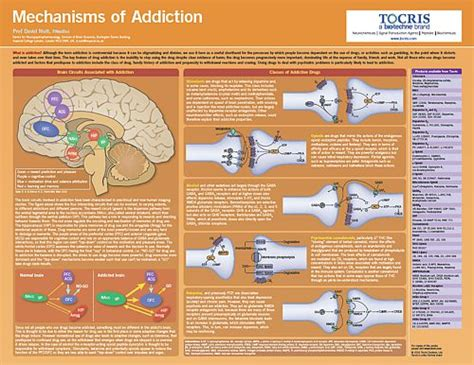 best science poster science posters tocris bioscience