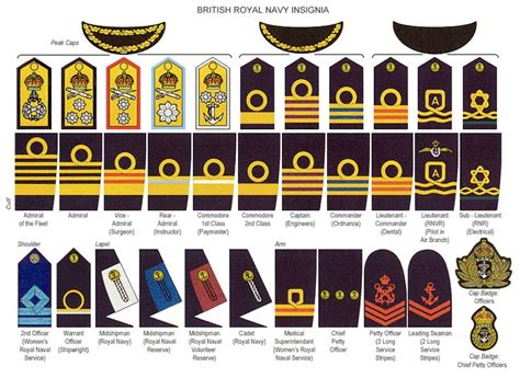 british royal marines insignia british police insignia badges recherche google grades