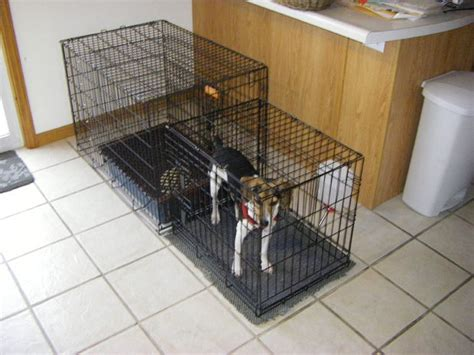indoor bathroom for dogs indoor dog kennel diy crafts