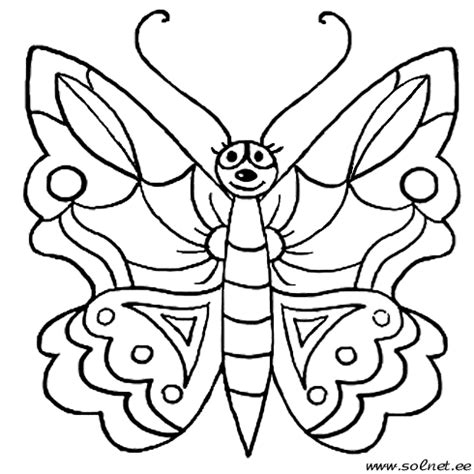 coloring pages of bugs and butterflies aprende brincando colorir borboletas