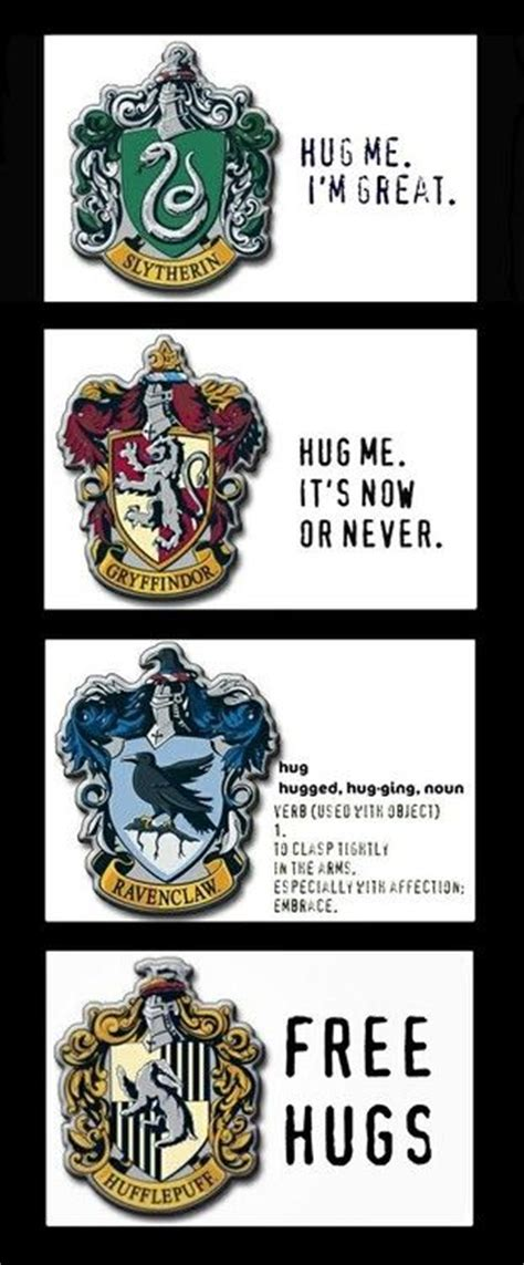 harry potter house descriptions the 25 best hogwarts houses ideas on pinterest harry