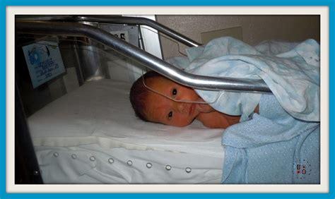 neonati in culla maggio 2012 bod 242